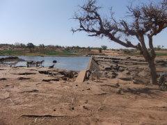 Dogonland: petit barrage