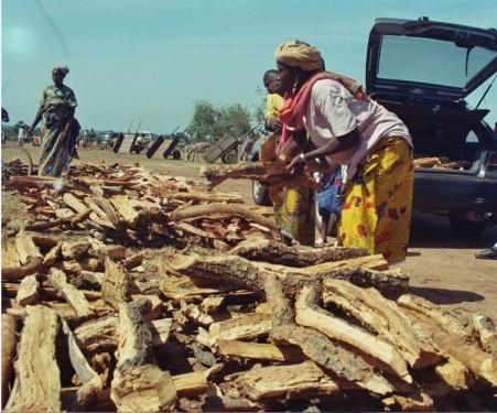 imm026_9A Markt für Feuerholz