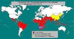 ACP-paludisme_Zones à risque répertoriées dans le monde