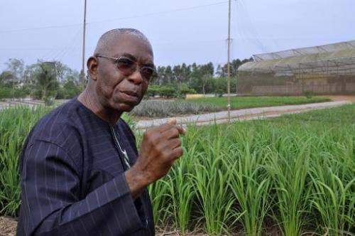 Le père Godfrey Nzamujo, directeur de la ferme bio Songhaï, à Porto-Novo, le 30 janvier 2014