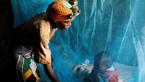 Foto (c) RFI: Paludisme