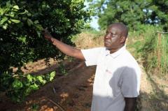 Oumar Diabaté dans sa ferme agroécologique le 17 septembre 2014 à Satinebougou