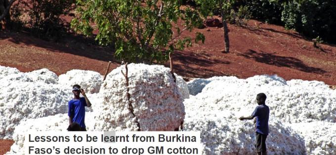 (c) the conversation_cotton in burkina