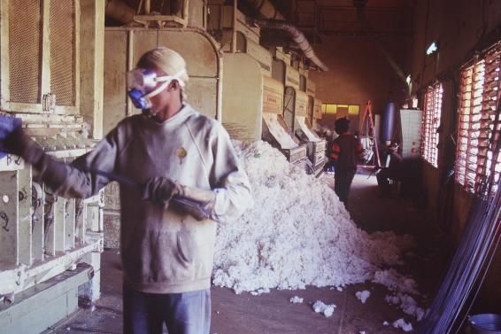 Foto (c) Olivier Epron - Olivier Epron, CC BY-SA 3.0, https://commons.wikimedia.org/w/index.php?curid=250298 Usine de coton CMDT au Mali - Baumwollfabrik in Mali